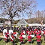 農業センター(Delaふぁーむ)しだれ梅祭り