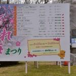 農業センター(delaふぁーむ)しだれ梅まつり開幕