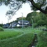 荒池緑地の散策