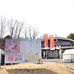 名古屋市農業センター「しだれ梅まつり」開幕