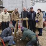 【平針北学区】5公園ソメイヨシノ植樹